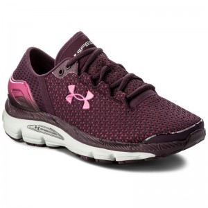 Under Armour Chaussures Ua W Speedform Intake 2 3000290-500 Gry