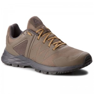 Black Friday 2020 | Reebok Chaussures Astroride Trail CN4579 Grey/Coal/Gold