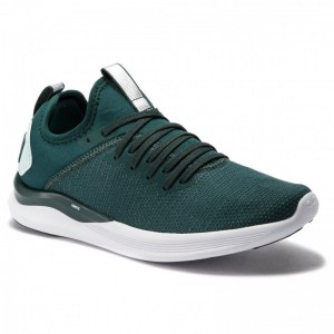 Black Friday 2020 | Puma Chaussures Ignite Flash EvoKnit Sr Wn's 192457 01 Ponderosa Pine/Fair Aqua