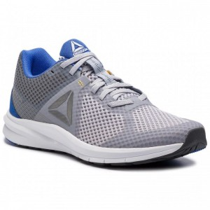 Reebok Chaussures Endless Road CN6426 Grey/Cobalt/Gld/Wht/Shdw