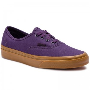 Vans Tennis Authentic VN0A38EMVKT1 Mysterioso/Gum