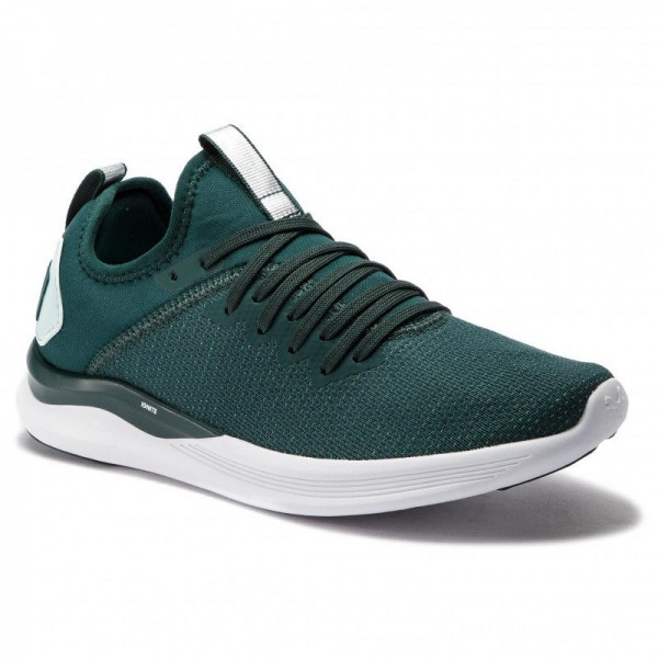 Puma Chaussures Ignite Flash EvoKnit Sr Wn's 192457 01 Ponderosa Pine/Fair Aqua